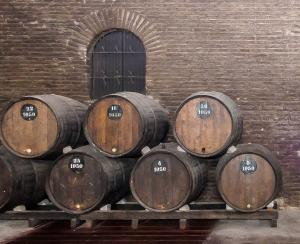 Винодельня Санта Каролина-7